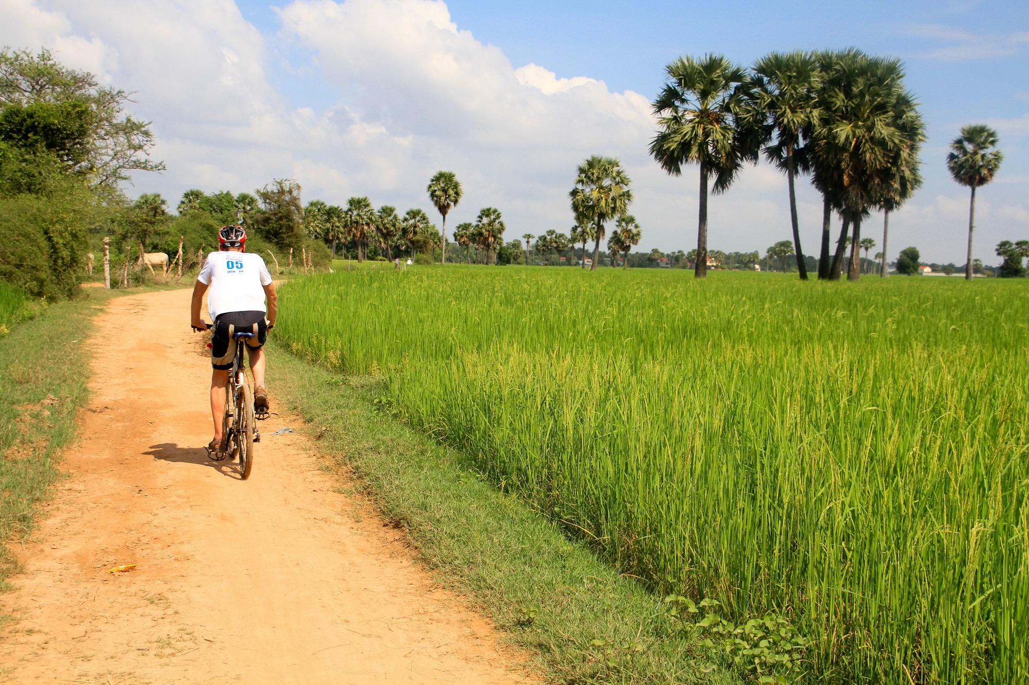 Photos from our Cambodia to Vietnam Cycling Holiday