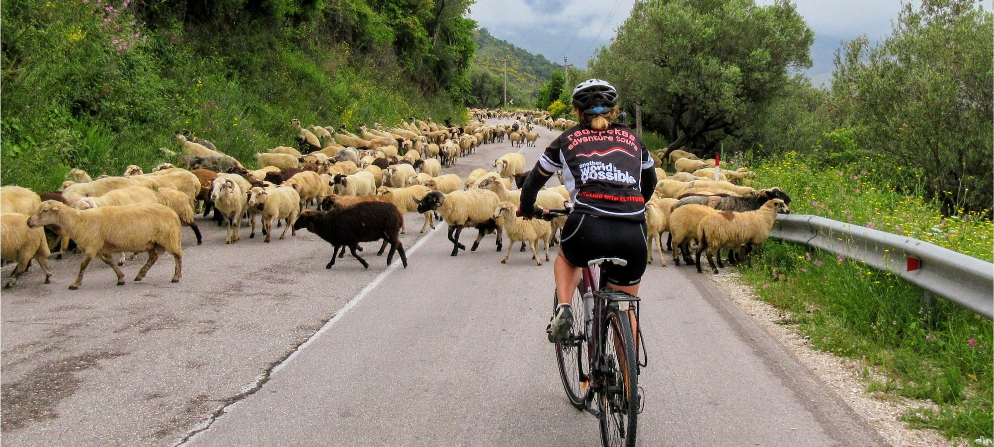 Photos from our Albania - Classic Cycling Holiday