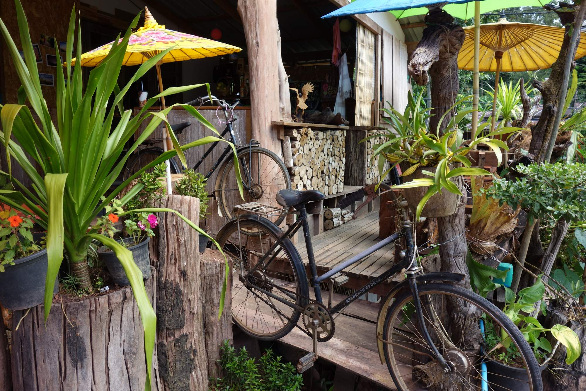 Photos from our North Thailand Cycling Holiday