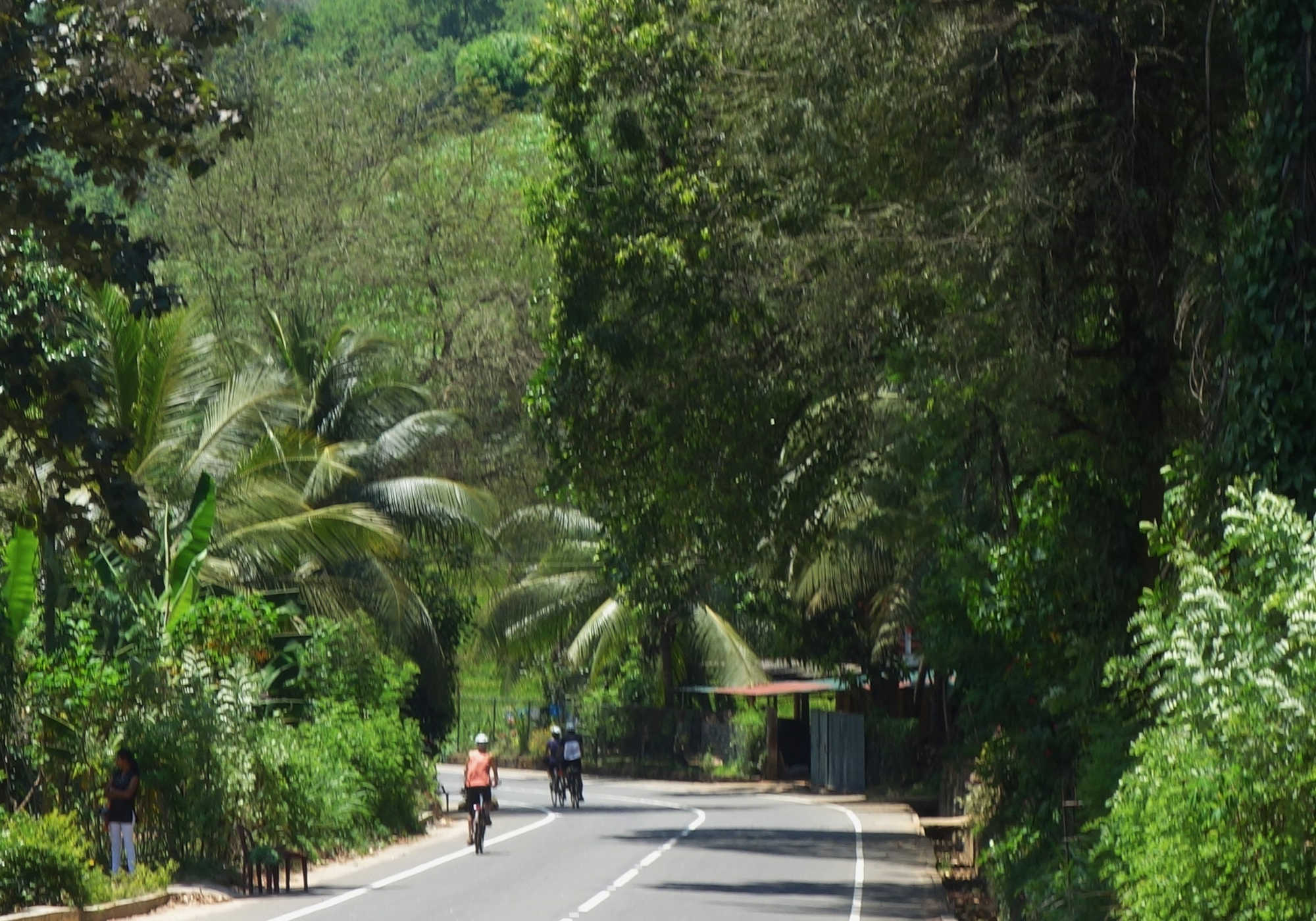 Photos from our Sri Lanka - North to South Cycling Holiday