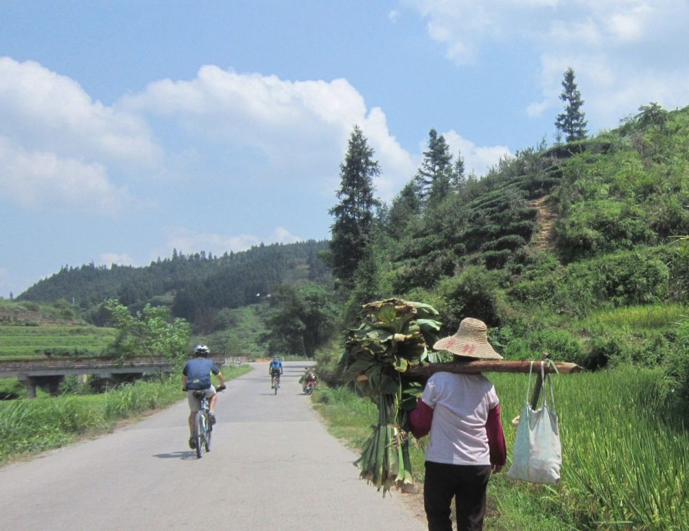 Cycling to Chengyang