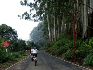View All Photos for redspokes' India - Kerala 7 days  Cycling Holiday Tour
