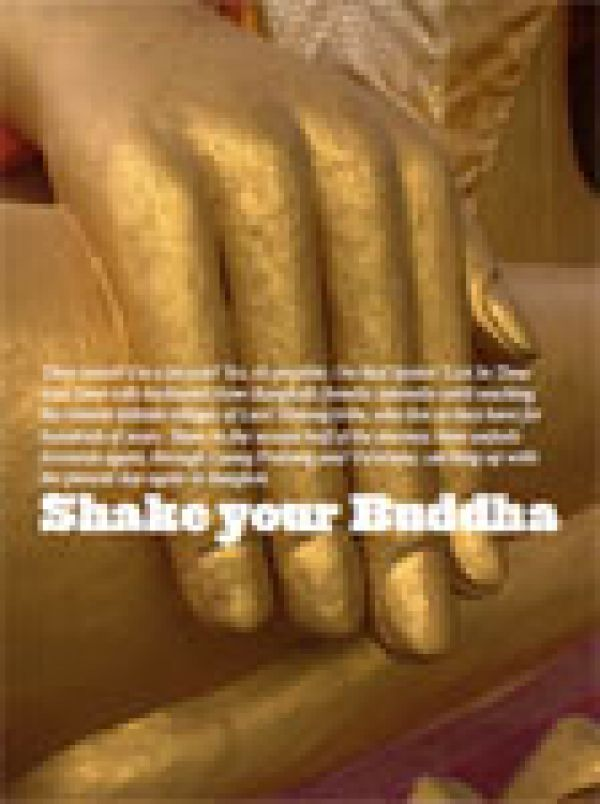 Shake Your Buddha | redspokes News Article