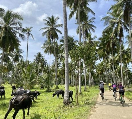 Explore redspokes' Sri Lanka - Classic Bicycle Tour